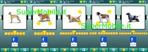 Soluzioni 100 pics quiz Razze Canine