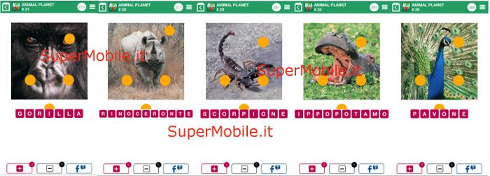 100 Pics Quiz - Animal Planet