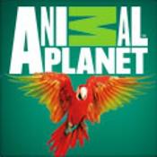 Soluzioni 100 Pics Quiz - Animal Planet