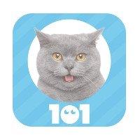 Soluzione 101 Immagini Animali