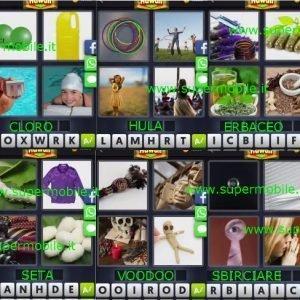 Soluzione 4 immagini 1 parola Hawaii