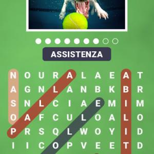 Immagine – Soluzioni 128 FC Puzzle