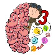 Brain Test 3